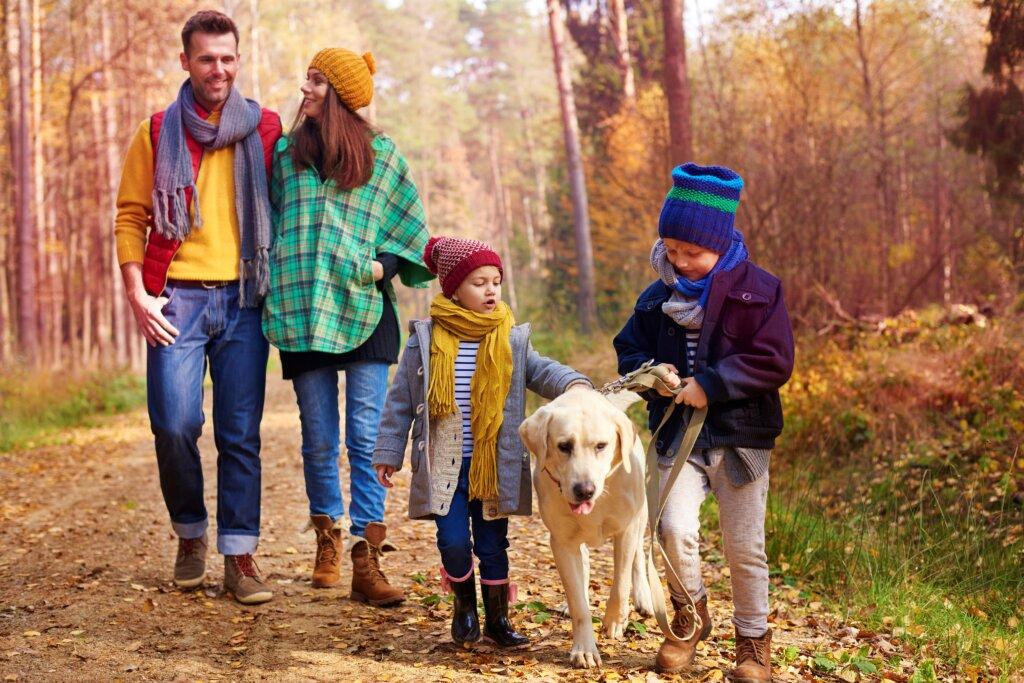 Walking with all family autumn season