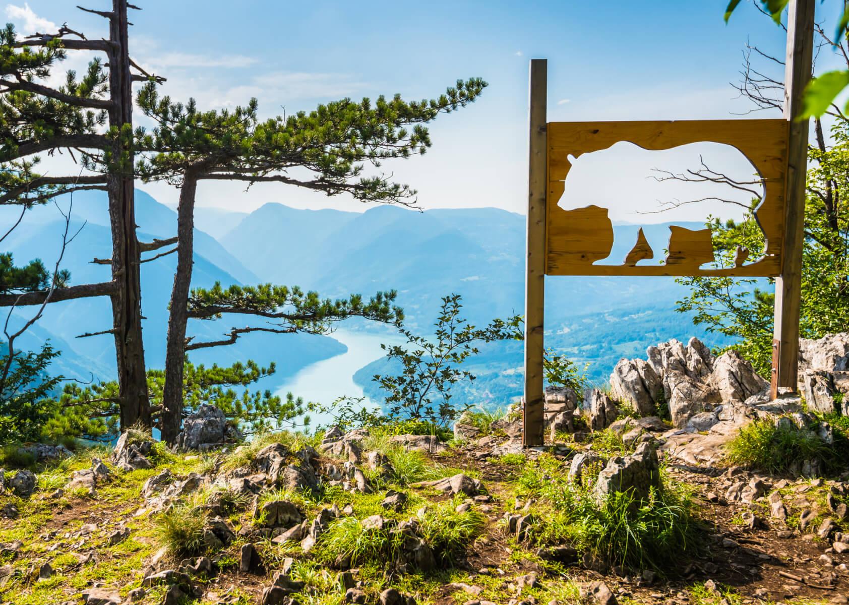 Raj u srbiji - tara nacionalni park